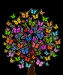 arbre-papillon.png